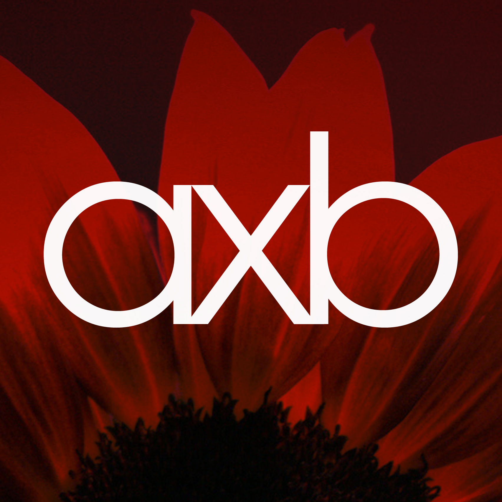 AXB-AXB